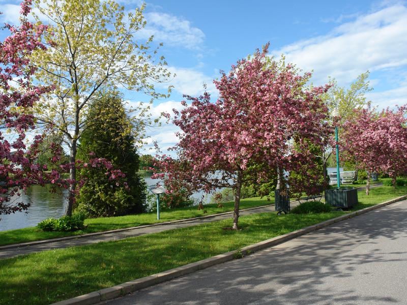 Parcs et Espaces verts - Promenade Laurent Naud